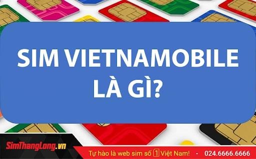 Kho SIM Vietnamobile Sim Thăng Long giá chỉ từ 199k!